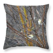 Two American Goldfinch Throw Pillow