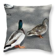 Two And Two Throw Pillow