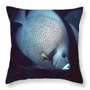 Two Angelfish Throw Pillow