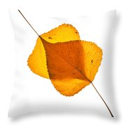 Two Backlit Cottonwood Leaves In Autumn On White Throw Pillow
