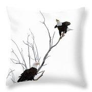 Two Bald Eagles Throw Pillow