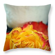 Two Beautiful Roses Throw Pillow