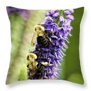 Salvia With Bees Throw Pillow