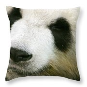 Two Black Eyes Throw Pillow