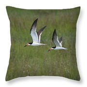 two Black Skimmers in flight Throw Pillow