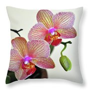 Two Blooms For You Throw Pillow