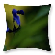 Two Blue Throw Pillow