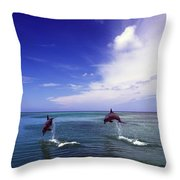 Two Bottlenose Dolphins Throw Pillow