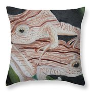 Two Brown Striped Frogs Throw Pillow