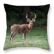 Two Bucks Throw Pillow