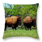 Two Buffalo Throw Pillow