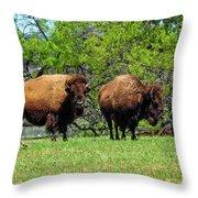 Two Buffalo Standing Throw Pillow