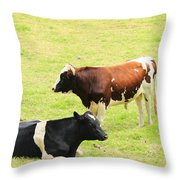 Two Bulls In A Pasture Throw Pillow