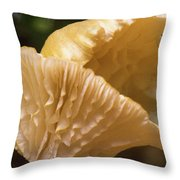 Two Cantharellus Throw Pillow
