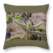 Two Cholla Friends Throw Pillow