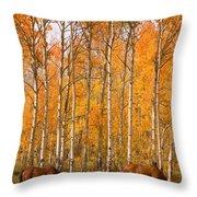 Two Colorado High Country Autumn Horses Throw Pillow