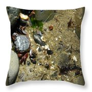 Two Crabs And One Worm Throw Pillow