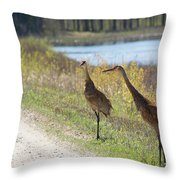 Two Cranes Throw Pillow