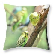 Two Cute Little Parakeets In A Tree Throw Pillow