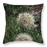 Two Dandelions, Throw Pillow