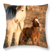 Two Days Old Throw Pillow