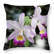 Two Delicate Orchids Throw Pillow