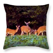 Two Doe And One Buck Throw Pillow