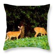 Two Doe Throw Pillow