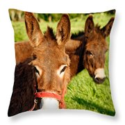 Two Donkeys Throw Pillow