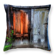 Two Doors On A Woodshed Throw Pillow