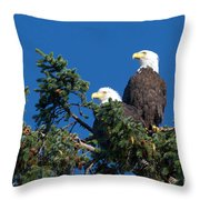 Two Eagles Throw Pillow