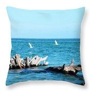 Two Egrets Throw Pillow