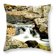 Two Falls Throw Pillow