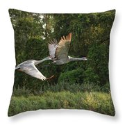 Two Florida Sandhill Cranes In Flight Throw Pillow