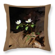 Two Freinds Throw Pillow