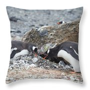 two Gentoos Throw Pillow