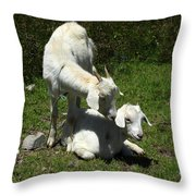 Two Goats In A Pasture Throw Pillow