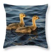 Two Goslings Throw Pillow