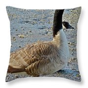 Two Heads Are Better Throw Pillow
