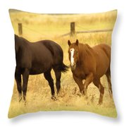 Two Horses In A Field Throw Pillow