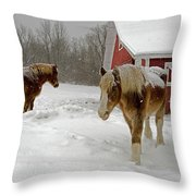 Two Horses In Winter Throw Pillow