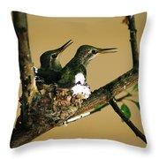 Two Hummingbird Babies In A Nest 5 Throw Pillow