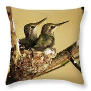 Two Hummingbird Babies In A Nest Throw Pillow
