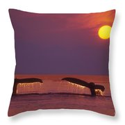 Two Humpback Whales Throw Pillow