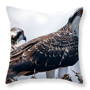 Two In The Nest Throw Pillow