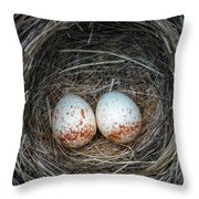 Two Junco Eggs In The Nest Throw Pillow