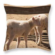 Two Little Lambs. Throw Pillow