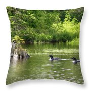 Two Loons Near Old Stump Throw Pillow