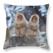 Two Monkeys Throw Pillow