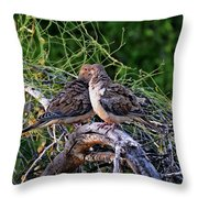 Two Mourning Doves H14 Throw Pillow